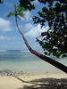 Fiji 2006 : 17 galleries with 288 photos