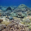 Palau 2009 : 29 galleries with 1309 photos