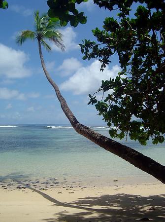 Fiji 2006